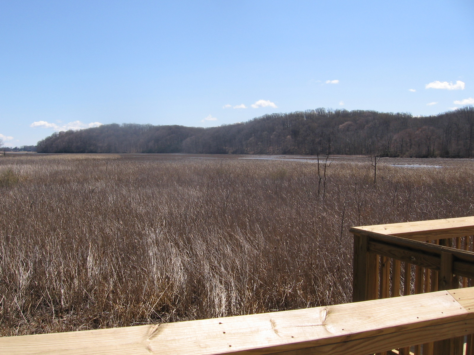 From the pier, visitors have a striking view of Accokeek Creek, looking east.
